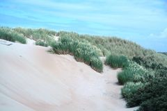 沙丘荷兰语横向 免版税库存照片