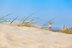 沙丘视图 库存照片
