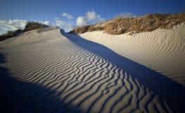 沙丘起波纹的沙子 免版税库存照片