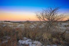 沙丘铺沙多雪的日出 免版税库存图片