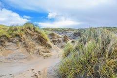 沙丘风景荷兰人与倾斜的北海海岸与沙丘草和光秃的谷 库存图片