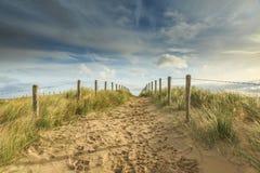 沙丘风景荷兰 库存图片
