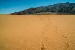 沙丘风景死亡谷国家公园 免版税库存图片