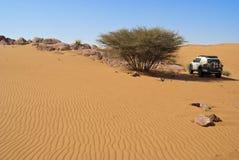 沙丘骑马在阿拉伯沙漠 免版税库存图片