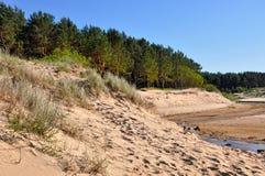 沙丘,波罗的海,绍尔克拉斯蒂,拉脱维亚 免版税库存图片