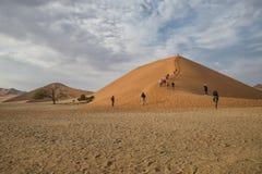 沙丘45纳米比亚 免版税库存照片