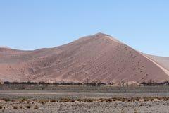 沙丘7,最高的沙丘在世界上, Sossousvle,纳米比亚 免版税图库摄影