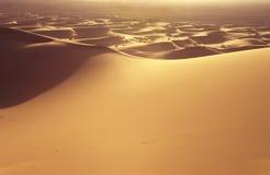沙丘 库存照片