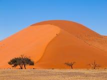 45沙丘 库存图片