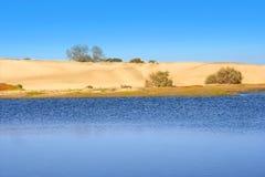 沙丘mas palomas沙子 库存图片