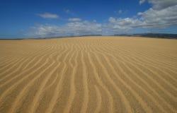 沙丘maspalomas 库存图片