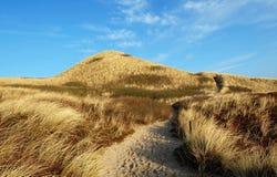 沙丘sylt 库存图片