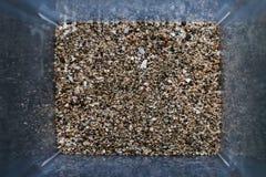 沙从海的在轰击被找到海滩 沙粒特写镜头视图在箱子的 ???????? 免版税库存图片