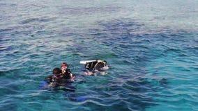 沙姆沙伊赫,埃及- 2016年12月6日:水肺的潜水者在海底准备潜水 影视素材