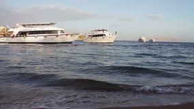 沙姆沙伊赫,鲨鱼海湾,埃及- 2016年11月30日:许多在岸的美丽的白色游艇 股票录像