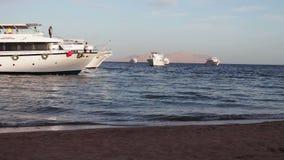 沙姆沙伊赫,鲨鱼海湾,埃及- 2016年11月30日:许多在岸的美丽的白色游艇 股票视频