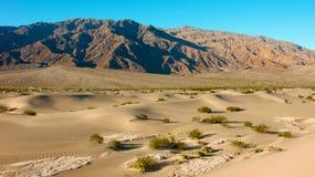 沙子和石头 库存图片