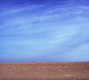 沙子天空 库存图片