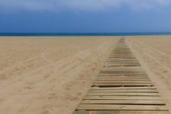 沙子木头 免版税库存图片
