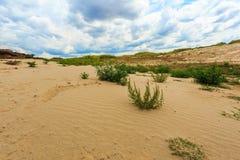 沙子沙漠视图 免版税库存照片