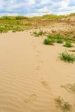 沙子沙漠视图 免版税库存图片