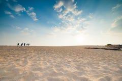 沙子沙漠 免版税库存照片