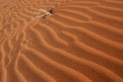 沙子波浪  图库摄影