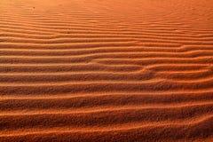 沙子波纹在沙漠 库存图片