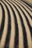 沙子波纹细节 免版税库存图片