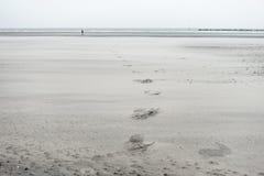 沙子海滩在敦刻尔克,法国 免版税图库摄影