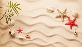 沙子海运壳 背景球海滩美好的空的夏天排球 库存图片