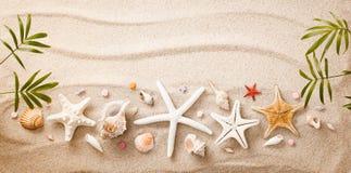 沙子海运壳 背景球海滩美好的空的夏天排球 免版税图库摄影