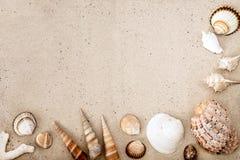 沙子海运壳 背景球海滩美好的空的夏天排球 顶视图 库存照片