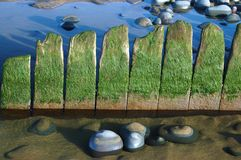 沙子海运石头 库存照片