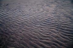 沙子海运纹理 库存照片