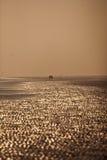 沙子海运 图库摄影