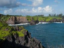 黑沙子海滩在毛伊夏威夷 免版税图库摄影