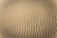 沙子海滩在福门特拉岛海岛,西班牙 免版税图库摄影