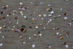 沙子海滩背景 图库摄影