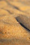 沙子海滩细节 免版税库存图片