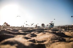 沙子海滩行人地亚哥的剪影  库存图片
