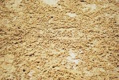 沙子海滩 免版税库存图片