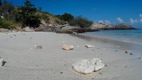 沙子白色 海 石头 影视素材