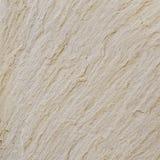 沙子石头纹理详细资料  免版税库存图片