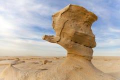 沙子石头在沙漠 库存图片
