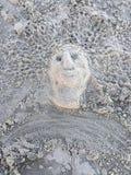 沙子精神 库存照片