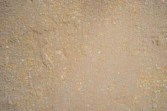 沙子纹理背景墙壁 免版税库存图片