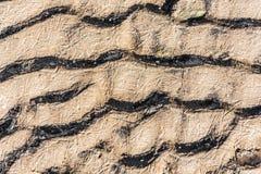 冻沙子纹理  库存照片