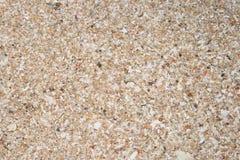 沙子背景 免版税库存照片