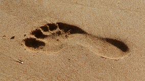 沙子脚印 免版税库存图片